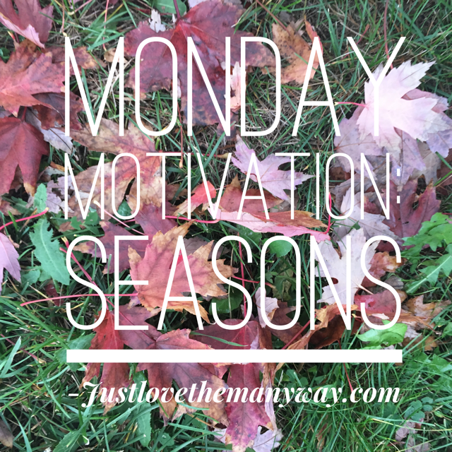 Monday Motivation : Seasons…